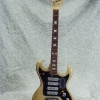 Vintage 1967 TeleStar 5004 Electric Guitar - Silver