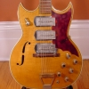 Vintage 1960\'s Airline Barney Kessel Model Swingmaster Electric Guitar (Standard)