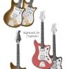 Vintage Egmond Guitar Models
