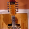 Vintage EKO 12-String DLX Electric Guitar