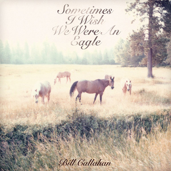 Bill Callahan - Sometimes I Wish I Were An Eagle