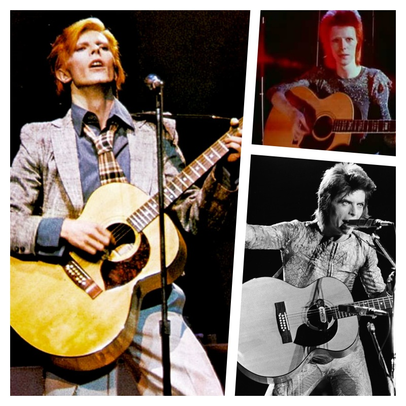 Bowie Harptone 12 Jumbo