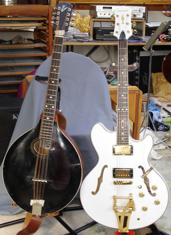 Gibson Mandocello & Eastwood Savannah Guitar