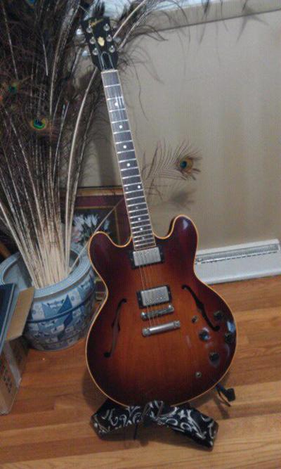 Mystery Ephiphone Guitar: Prototype or Custom Build?
